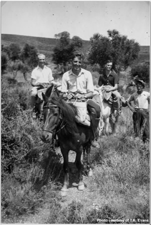 Riding at Navarin on Mules - Curry - Willett - Sampson