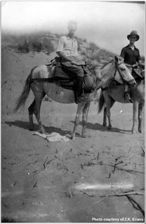 Riding at Navarin on Mules - TK Evans (left) and Sampson (right)